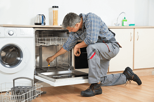 dish washer services-image